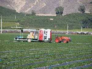 Agriculture industry temporary rentals