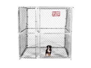 cal-state kennel rental 02