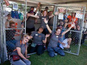 pet adoption kennel rentals
